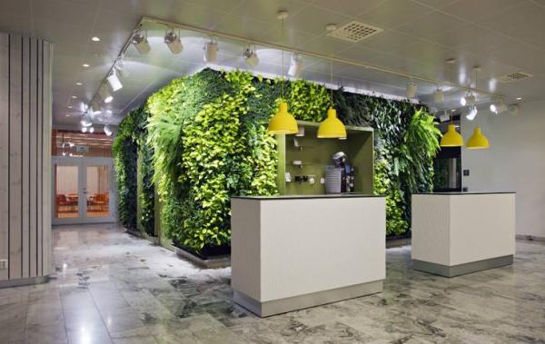 办公室植物墙:让植物与工作息息相关