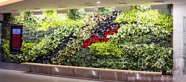植物墙景观,植物墙作用