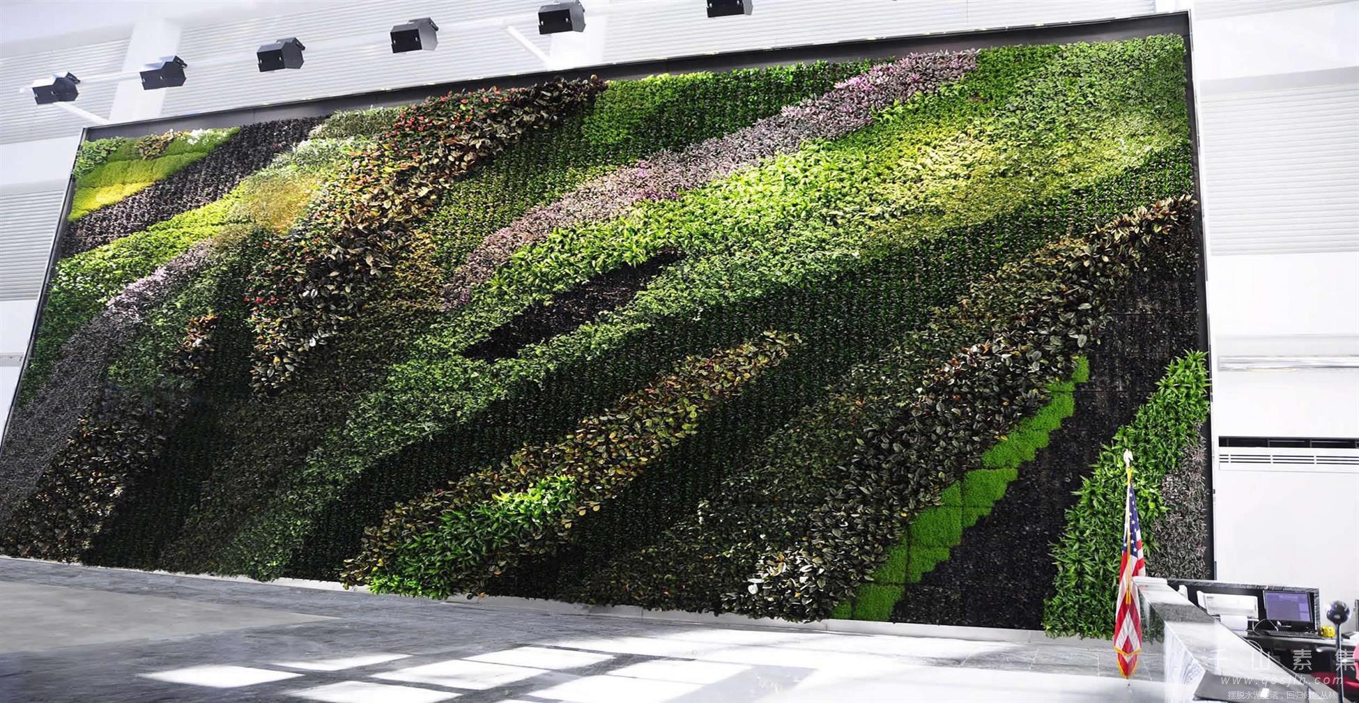 植物墙景观,植物墙设计,植物墙绿化