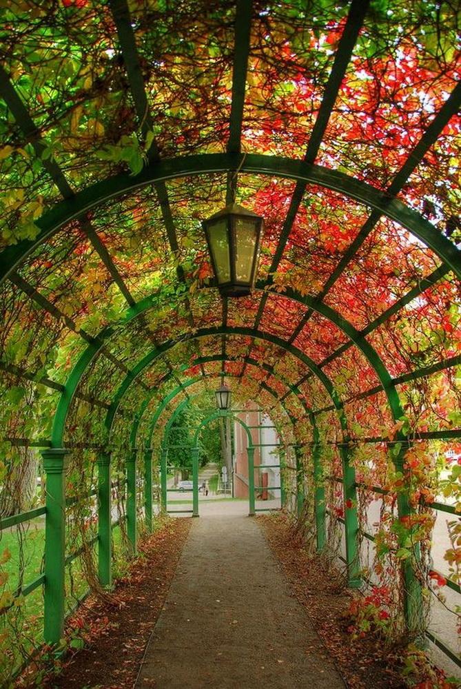 垂直立体绿化,屋顶绿化,立交桥绿化,阳台绿化