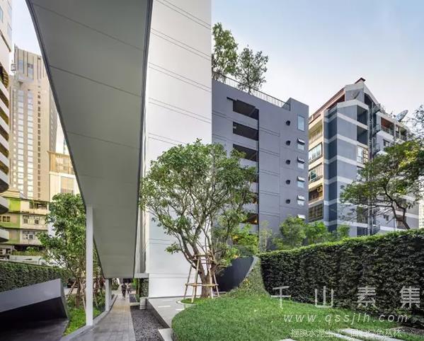 公寓植物墙,公寓垂直绿化