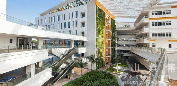垂直绿化景观,城市垂直绿化
