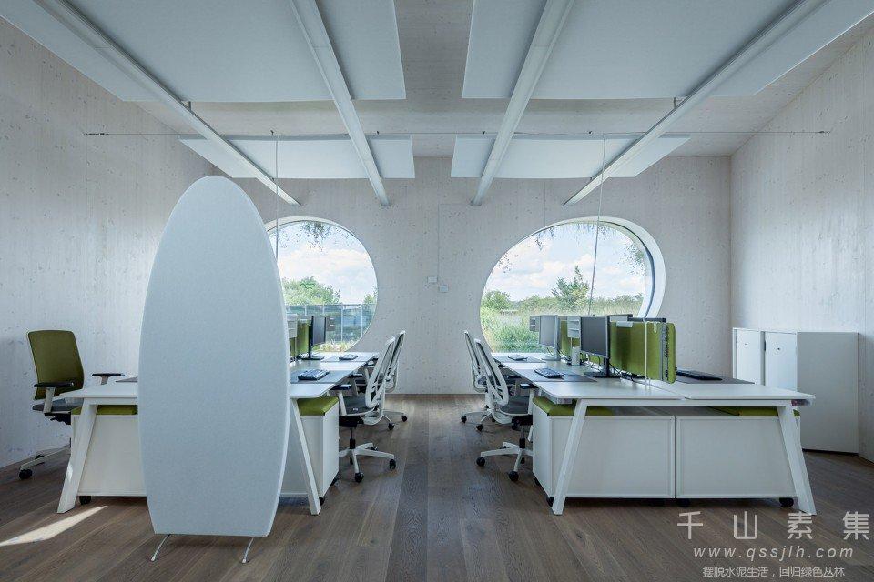 办公室植物墙,植物墙景观