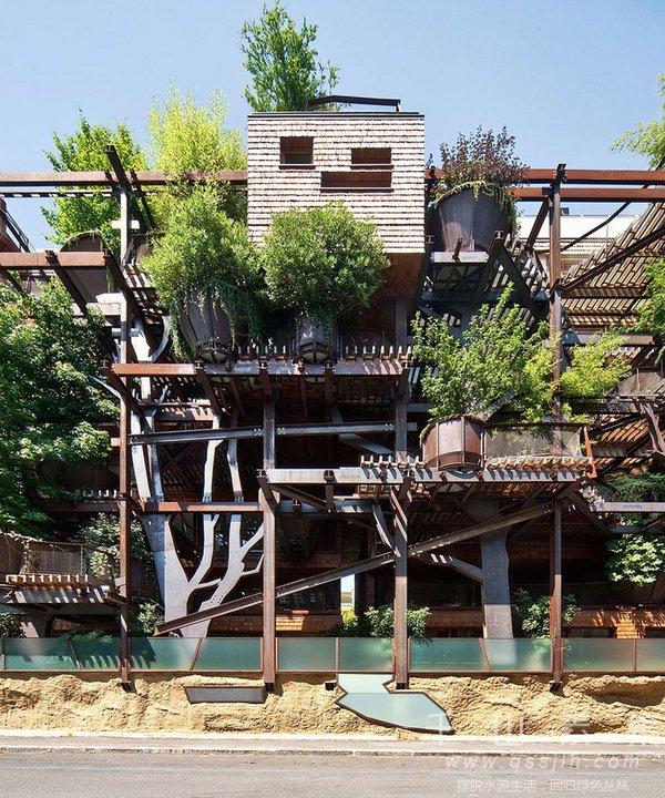 垂直绿化实例