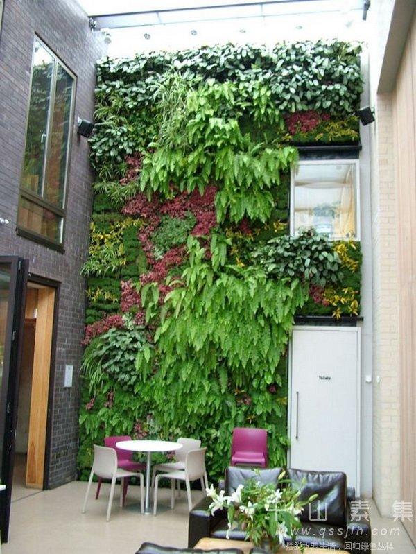 植物墙技术