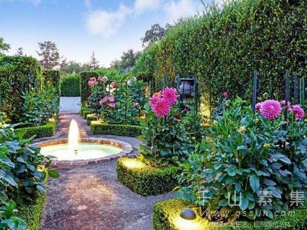 植物墙养护,垂直绿化概念