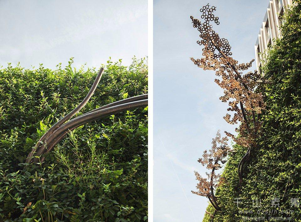 植物墙景观,植物墙设计,公园植物墙
