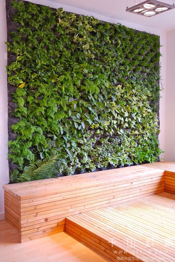 植物墙施工