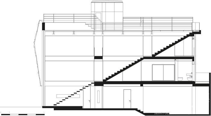 住宅植物墙,垂直花园