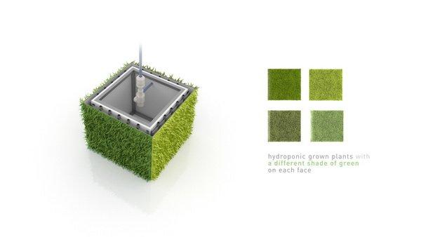 建筑植物墙,艺术植物墙
