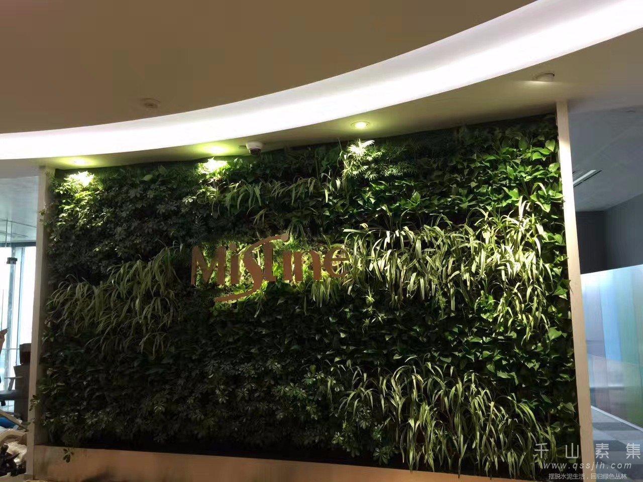 公司植物墙,上海植物墙