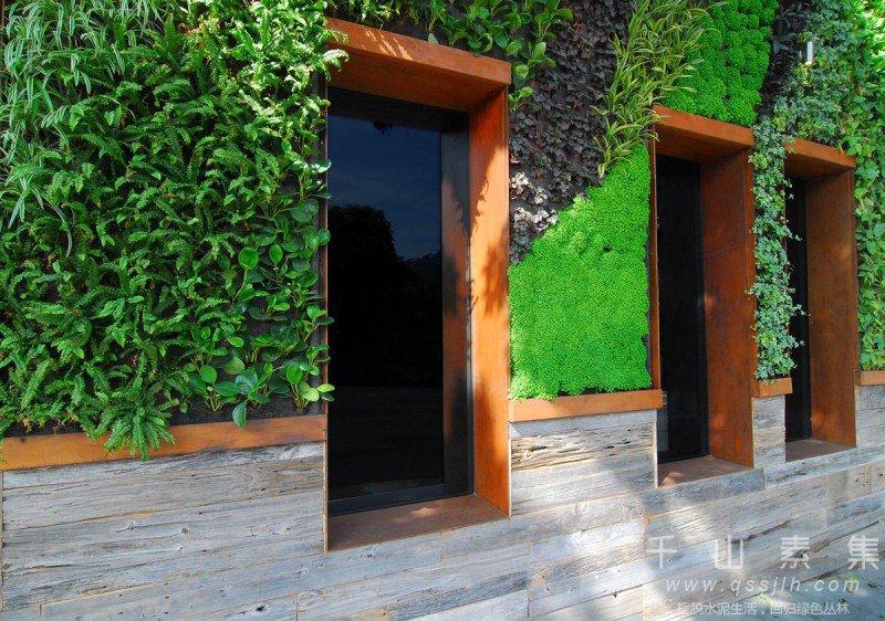 酒店植物墙,植物墙设计,植物墙景观