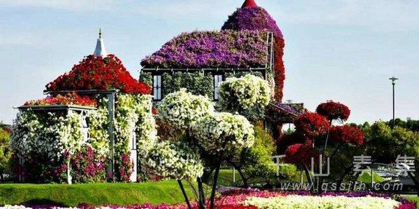 植物墙设计,植物墙景观