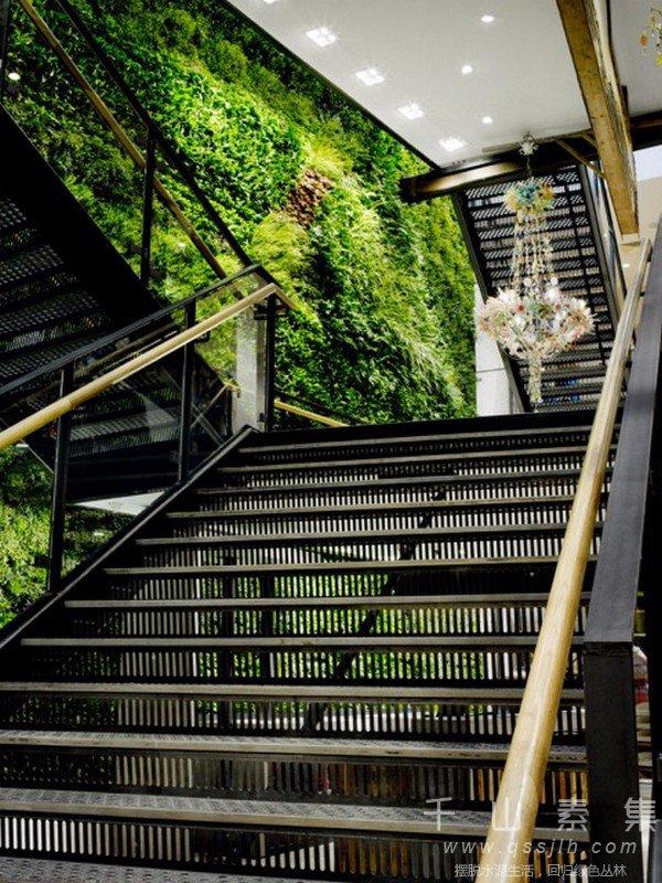楼梯植物墙,植物墙设计,植物墙景观