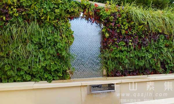 水幕植物墙,植物墙设计,植物墙景观