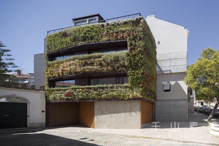 植物墙行业现状,植物墙前景分析
