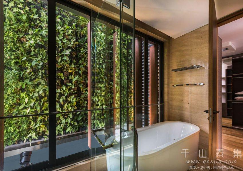 室内植物墙,植物墙设计,植物墙好处