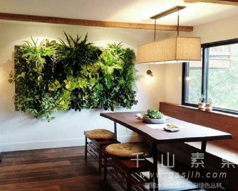植物墙成本,植物墙价格