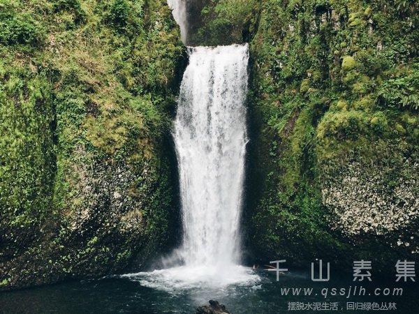 瀑布式植物墙,植物墙设计,植物墙景观