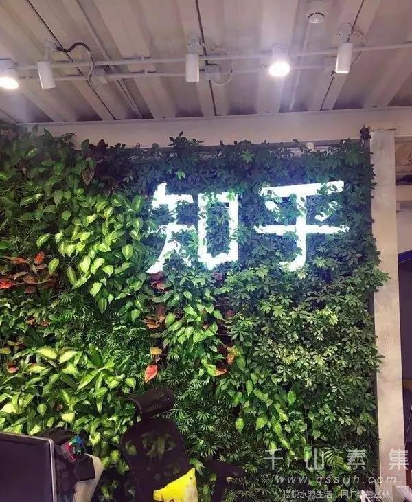 办公室植物墙
