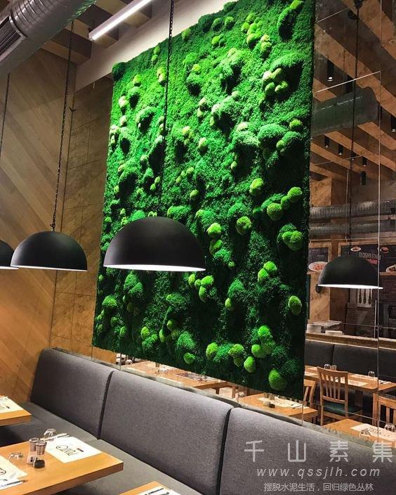 餐厅植物墙
