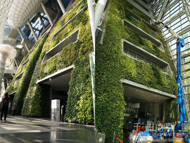植物墙建筑,垂直绿化建筑,城市绿化,植物墙景观