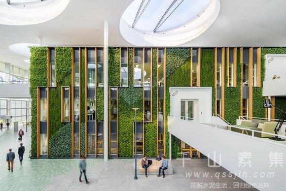 植物墙职业
