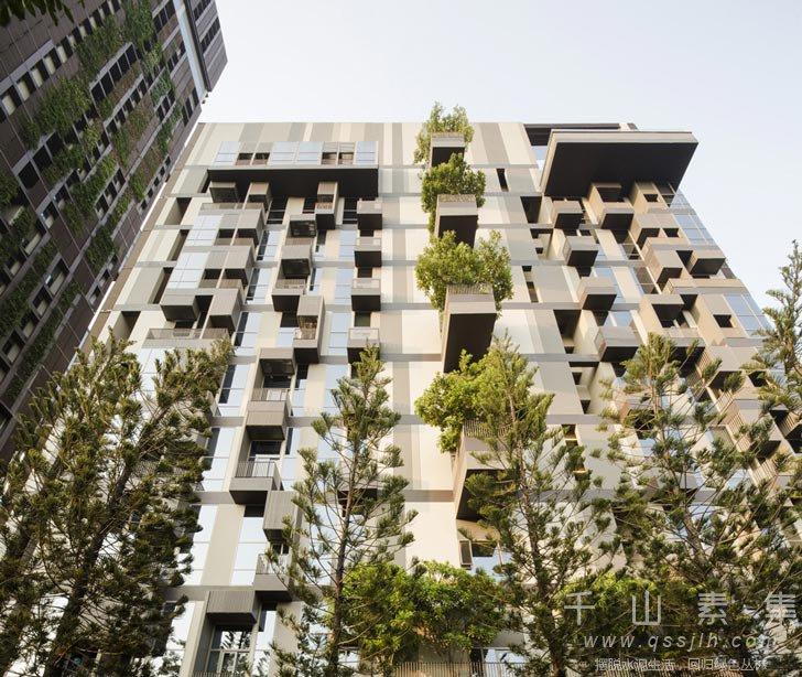 城市植物墙,住宅楼植物墙,植物墙景观