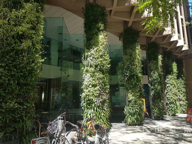 柱式植物墙,植物墙设计,植物墙景观