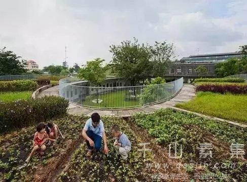 幼儿园植物墙