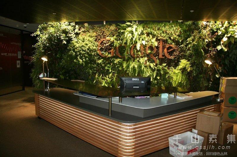 前台植物墙,背景植物墙,植物墙设计