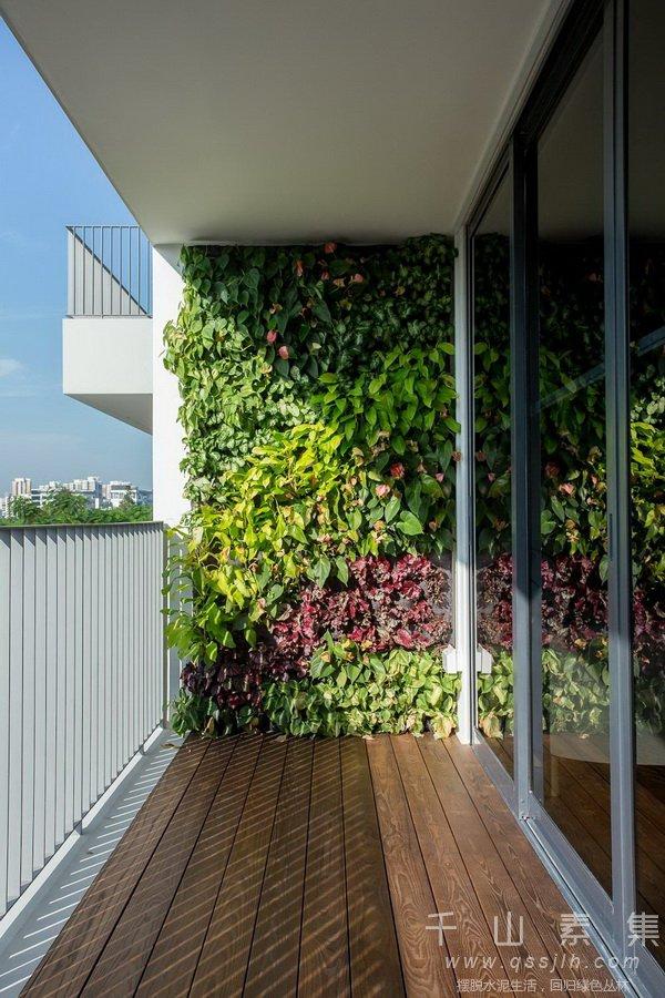 阳台花园,阳台垂直绿化,阳台植物墙,植物墙设计