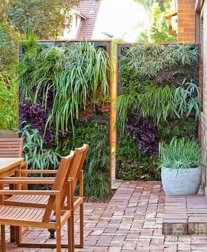 露台的呼吸-植物墙