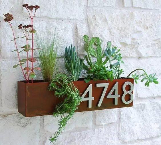 家居绿植全新方式 创意让生活更加美好_千山素集植物墙_新浪博客