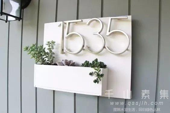 家居绿植,阳台种花