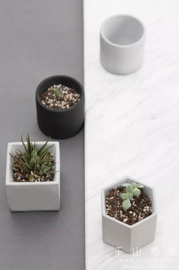 水培植物墙,移动式植物墙,植物墙屏风,智能植物墙
