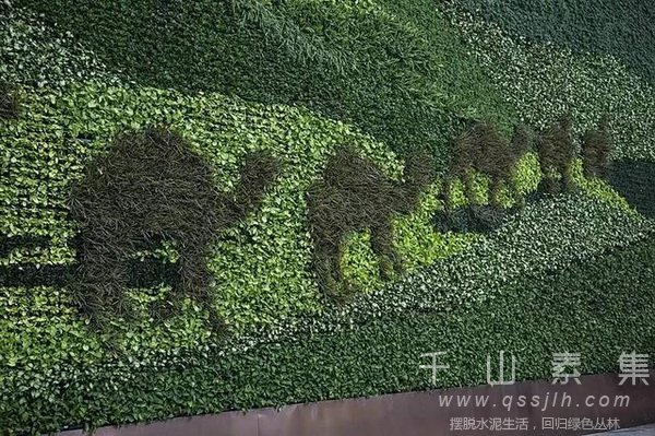 主题植物墙,植物墙设计,植物墙景观