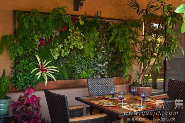 植物花墙,植物墙设计