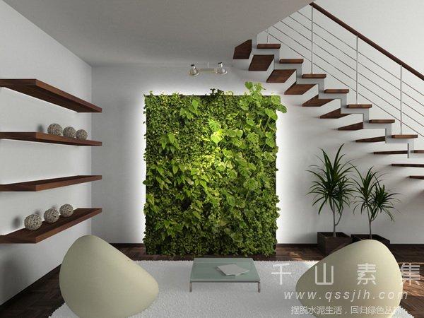 室内植物墙,植物墙设计,植物墙景观