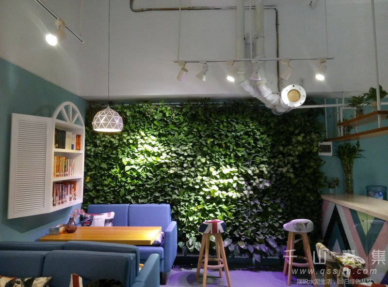 植物墙案例