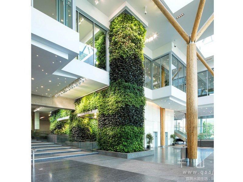 政府楼植物墙,植物墙设计,室内植物墙,植物墙景观