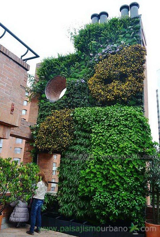 公寓垂直绿化,垂直绿化景观