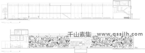 餐厅植物墙,室内植物墙,植物墙设计