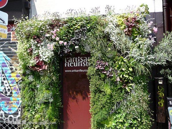 花店植物墙,植物墙景观,植物墙设计