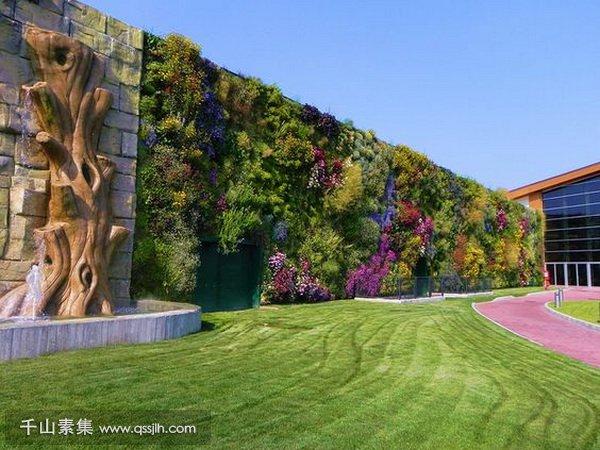 城市垂直绿化,垂直绿化景观