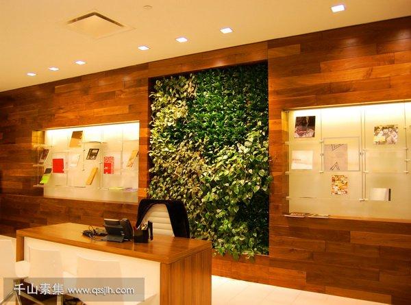 银行植物墙,植物墙设计,植物墙景观
