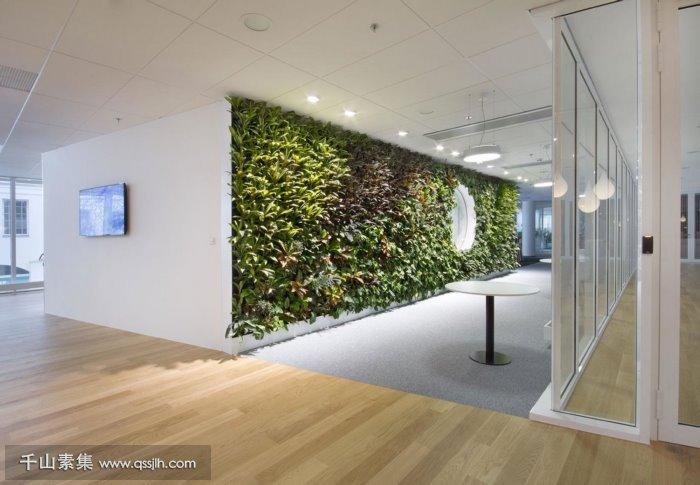 混搭式植物墙