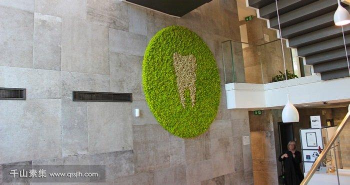 三亚植物墙
