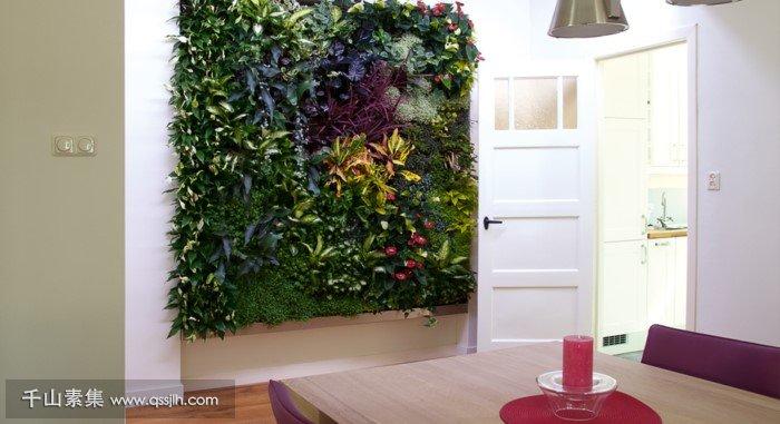住宅植物墙