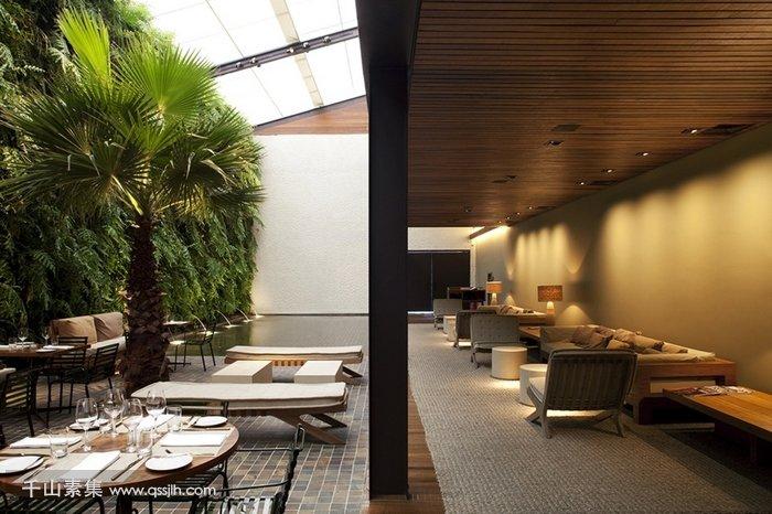 餐厅垂直绿化